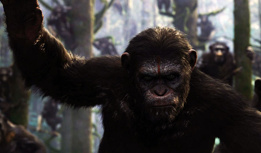 Amanecer-planeta-simios-5