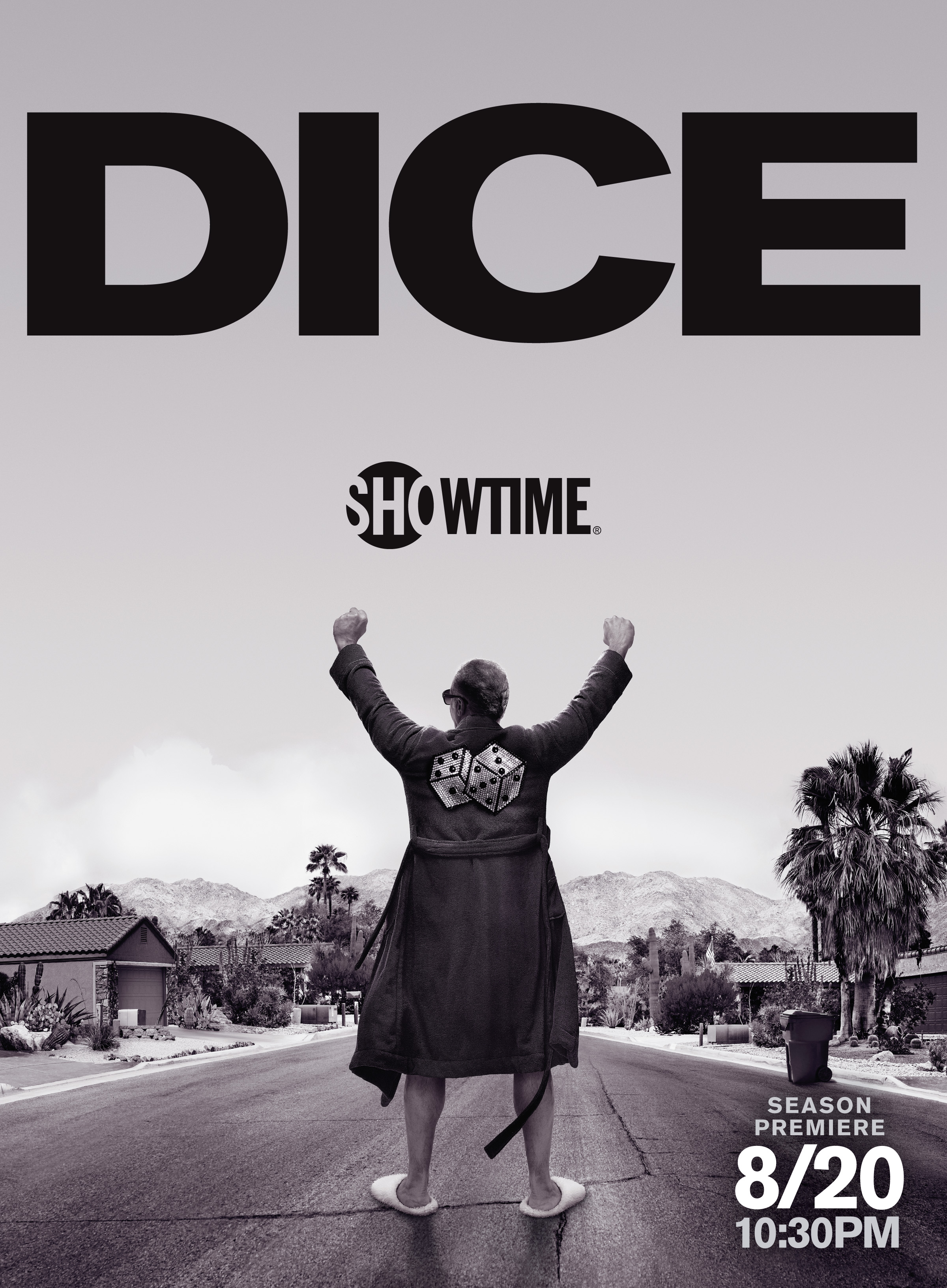 Dice T2 poster