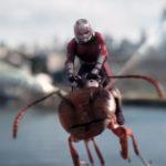 Ant-man-y-la-Avispa